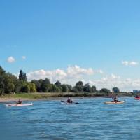 Abpaddeln auf dem Rhein 27.09.2015_12