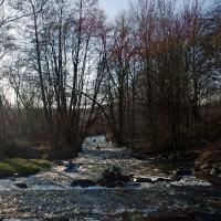 Verbandsfahrt Kanu NRW_13
